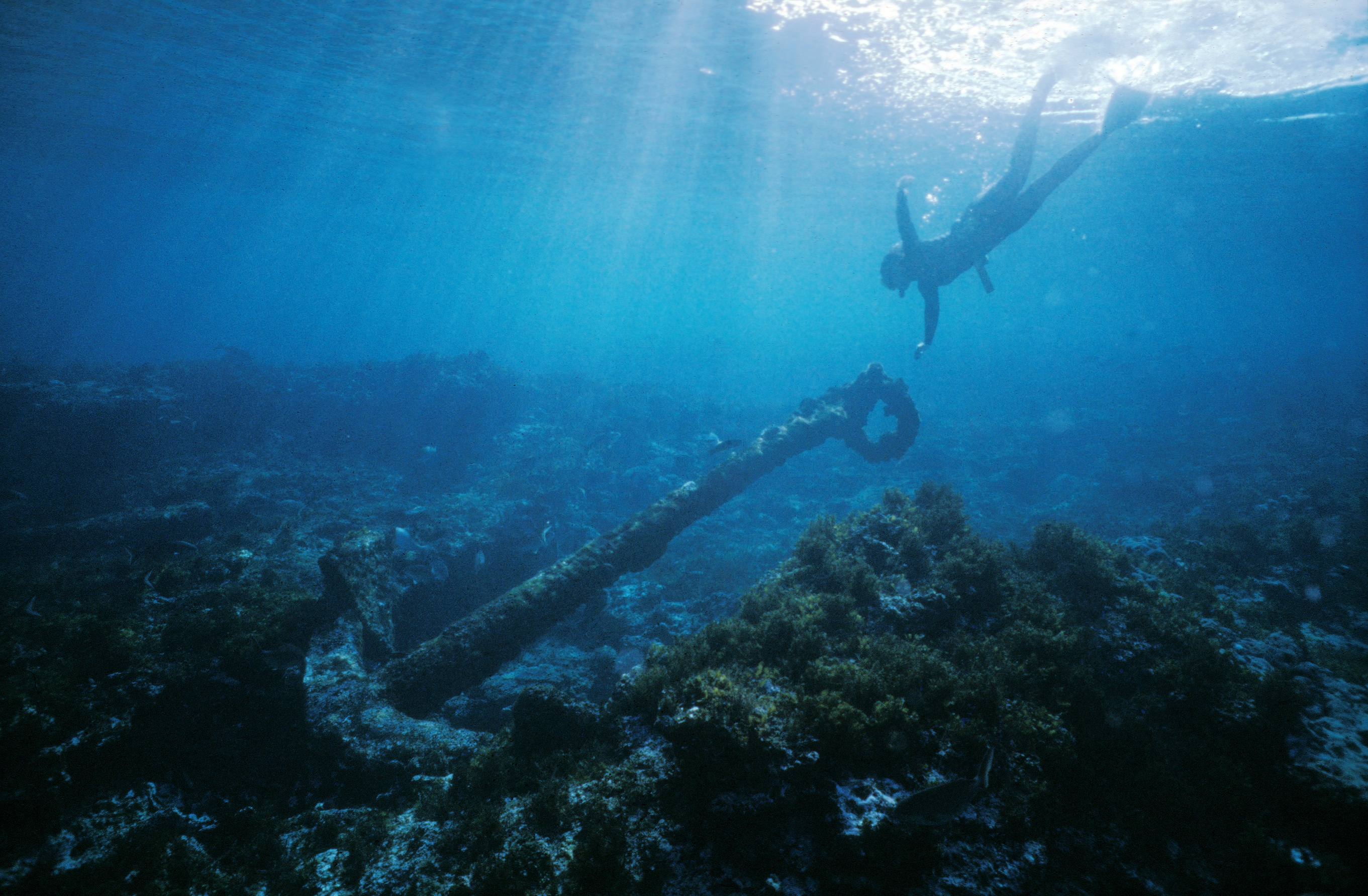 Anchor from the wreck of the Batavia. Photo by Patrick Baker, Western Australian Museum.